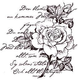 den_blomstertid_kollage