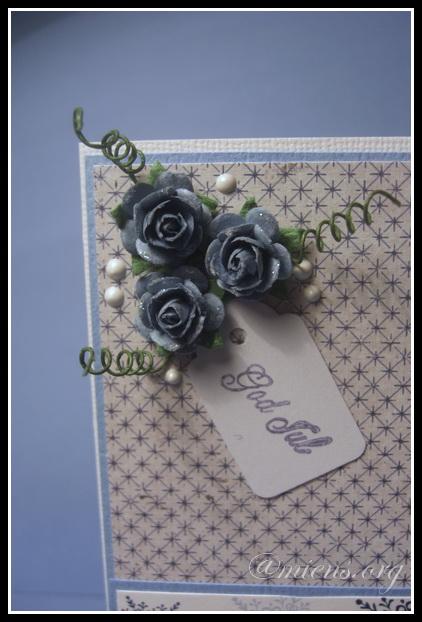 Tre rosor, sex halvpälro och en tag
